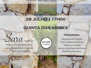 Sons na Bairrada - Abibes 28 de Julho