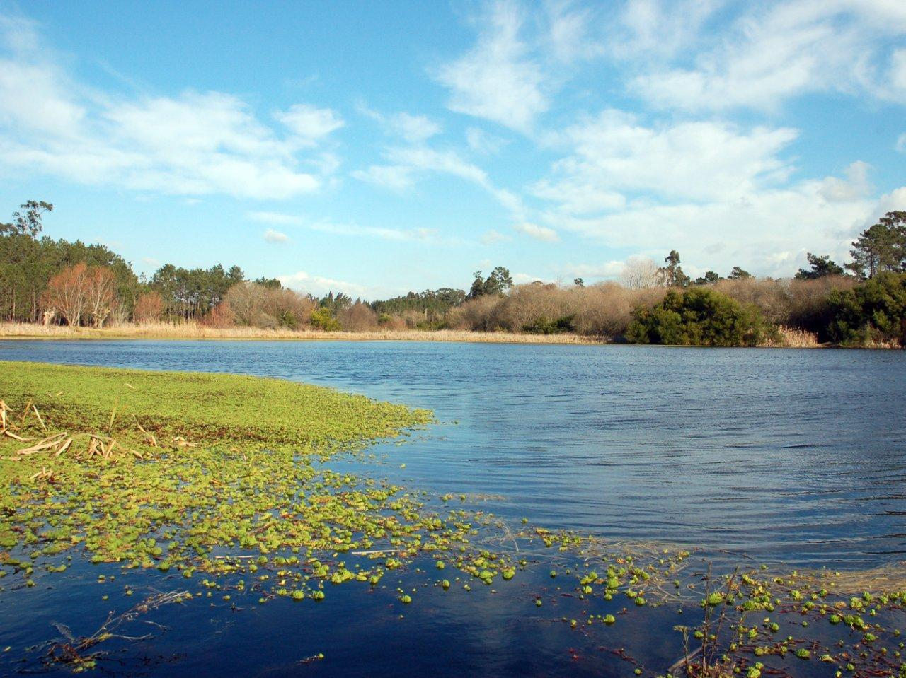Lagoa dos Teixoeiros ou da Mata