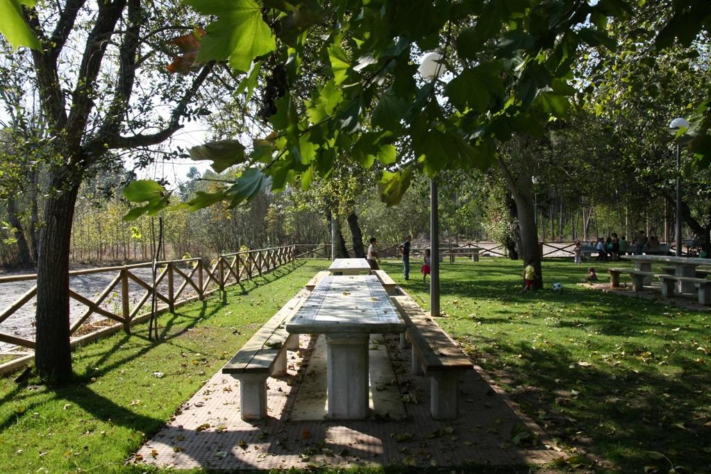 Parque da Ponte de Vagos