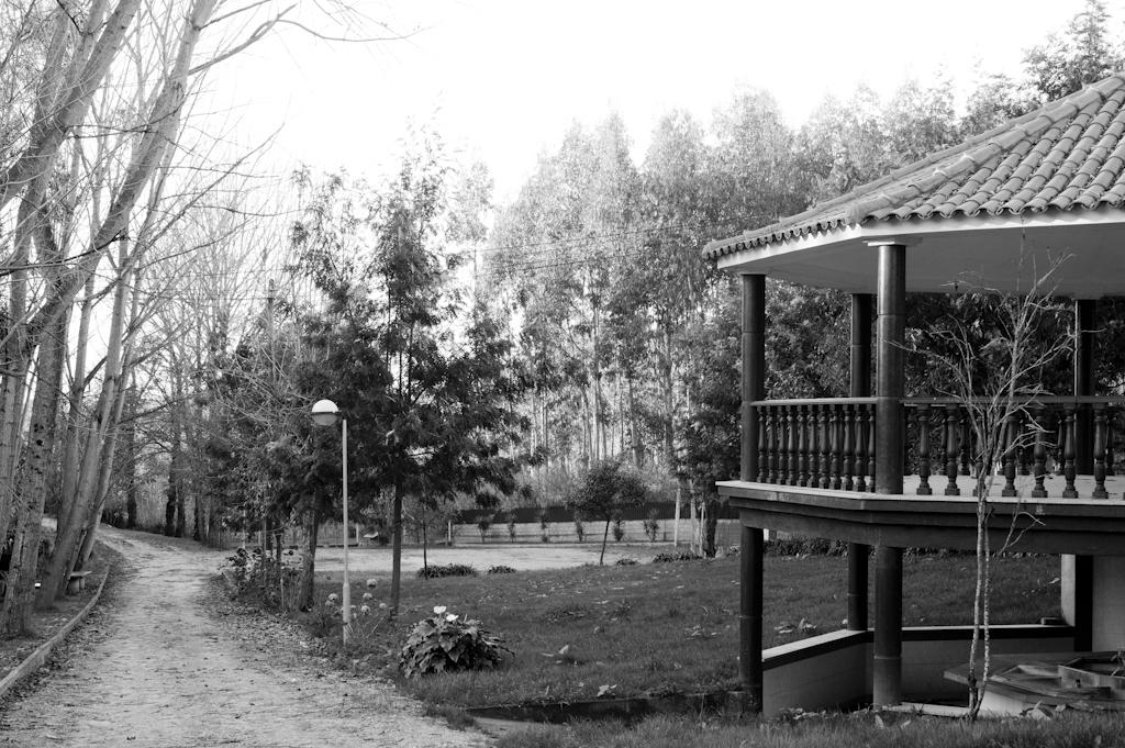 Parque da Parede