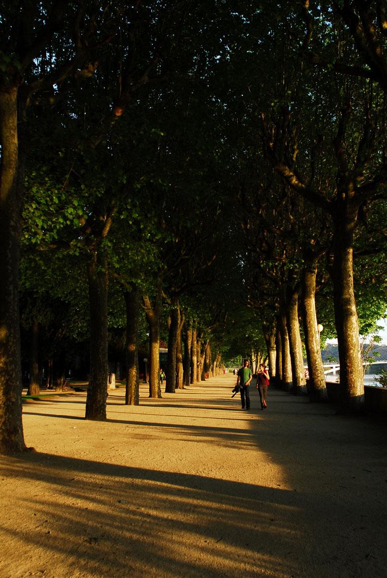 Parque Manuel Braga