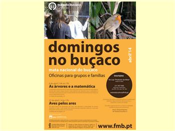 Domingos no Buçaco