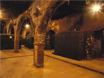 Visita às Caves São João