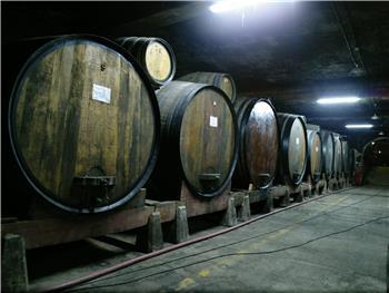"""Prova de Vinho: Aliança - """"A Velha Amiga de todos os dias"""""""