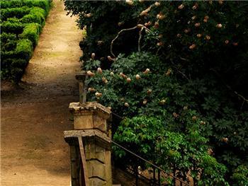 Jardim do Botânico- Visita