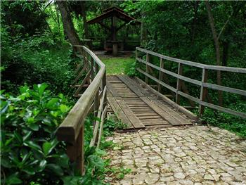 Bosque Nacional de Choupal