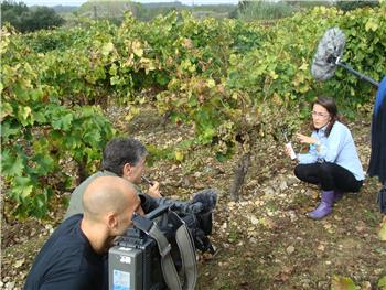 Euronews na Quinta da Mata Fidalga