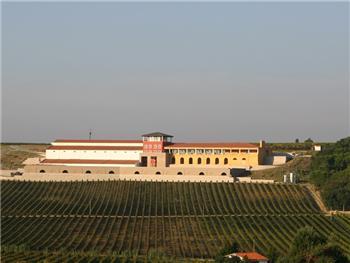Campolargo Productor del Año 2005 por la revista Vino
